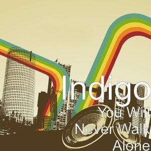 Indigo (藍)