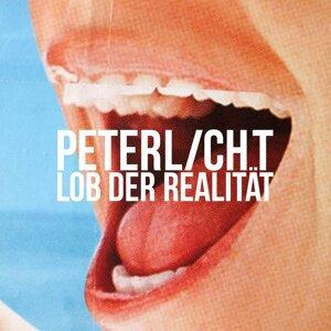 PeterLicht 歌手頭像