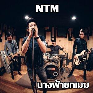 NTM 歌手頭像