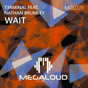 T3RMINAL featuring Nathan Brumley 歌手頭像