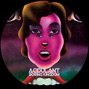 Acidulant 歌手頭像