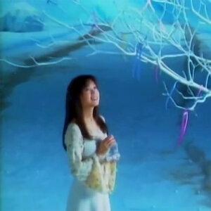泰合志恒 歌手頭像