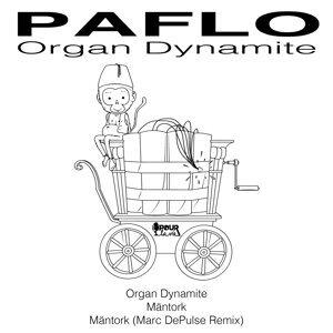 Paflo 歌手頭像