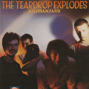 The Teardrop Explodes 歌手頭像