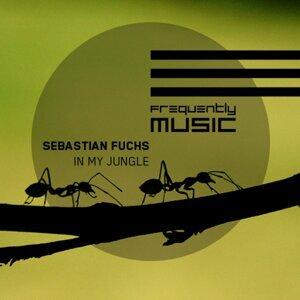 Sebastian Fuchs 歌手頭像