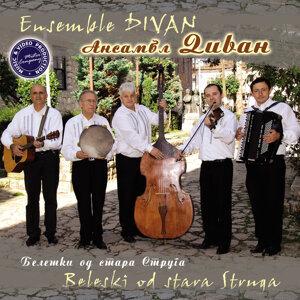 Ensemble Divan 歌手頭像