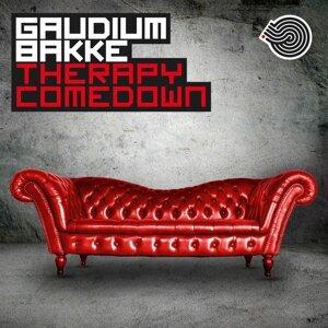 Gaudium, Bakke, Gaudium, Bakke 歌手頭像