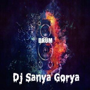 DJ Sanya Gorya 歌手頭像