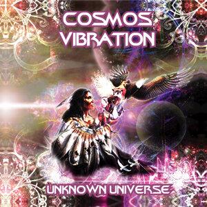 Cosmos Vibration 歌手頭像