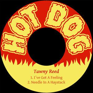 Tawny Reed 歌手頭像