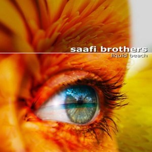 Saafi Brothers 歌手頭像