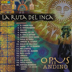 Opus II Andino 歌手頭像