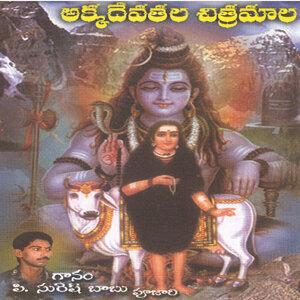 P. Suresh Babu(Pujari) 歌手頭像