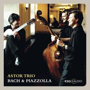 Astor Trio 歌手頭像