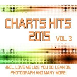 Charts Hits 2015 歌手頭像