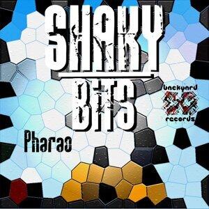 Shaky Bits 歌手頭像
