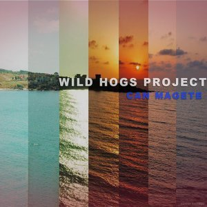 Wild Hogs Project 歌手頭像