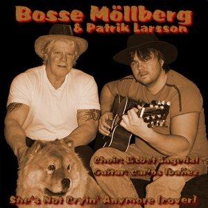 Bosse Möllberg & Patrik Larsson 歌手頭像
