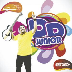 DD Júnior 歌手頭像