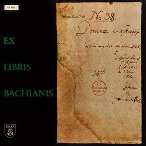 Kammerorchester Deutsche Bach-Solisten / Helmut Winschermann / Saschko Gawriloff 歌手頭像