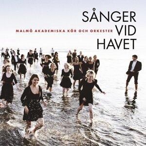 Malmö Akademiska Kör och Orkester feat. Daniel Hansson 歌手頭像