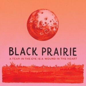 Black Prairie 歌手頭像