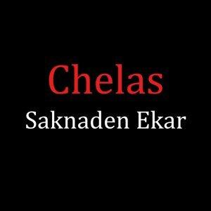 Chelas 歌手頭像