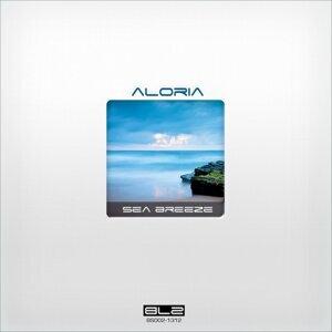 Aloria 歌手頭像
