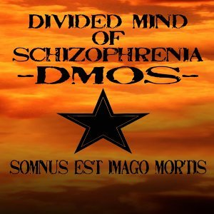 Divided Mind of Schizophrenia 歌手頭像