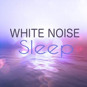 Deep Sleep and Nature Sounds 歌手頭像