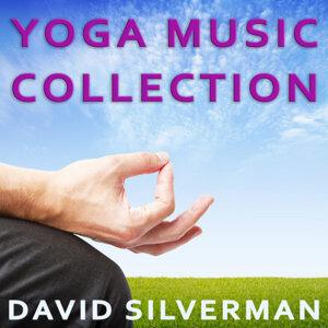 David Silverman 歌手頭像