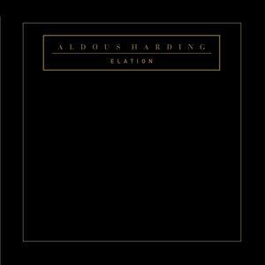 Aldous Harding 歌手頭像