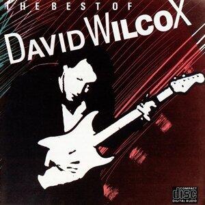 David Wilcox 歌手頭像