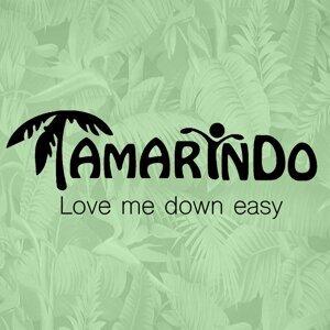 Tamarindo 歌手頭像