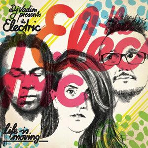 DJ Vadim presents the Electric 歌手頭像
