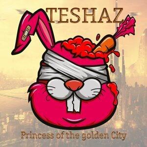 Teshaz 歌手頭像