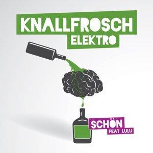 Knallfrosch Elektro feat. Lulu 歌手頭像