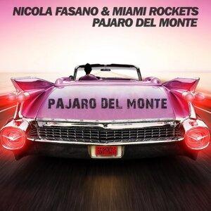 Nicola Fasano & Miami Rockets 歌手頭像