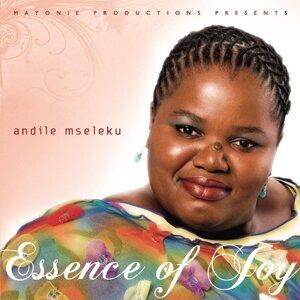 Andile Mseleku 歌手頭像
