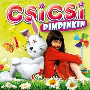 Csicsi 歌手頭像