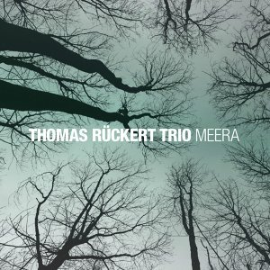 Thomas Rückert Trio 歌手頭像