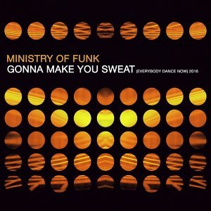 Ministry Of Funk 歌手頭像