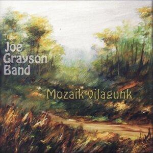 Joe Grayson Band 歌手頭像