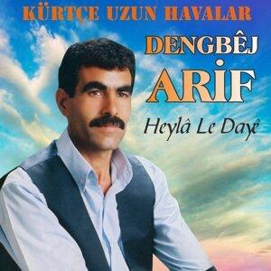 Dengbej Arif 歌手頭像
