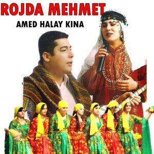 Rojda Mehmet 歌手頭像