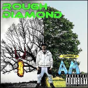 Rough Diamond 歌手頭像