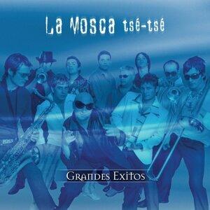 La Mosca Tse-Tse 歌手頭像