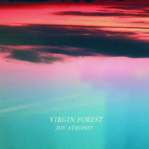 Virgin Forest 歌手頭像