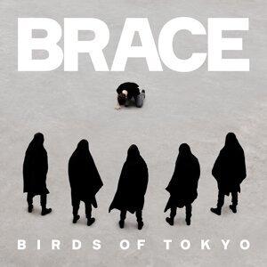 Birds Of Tokyo