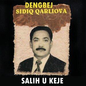 Dengbej Sıdıq Qarlıova 歌手頭像